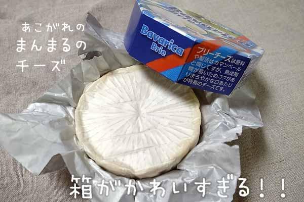 まんまるのブリーチーズ