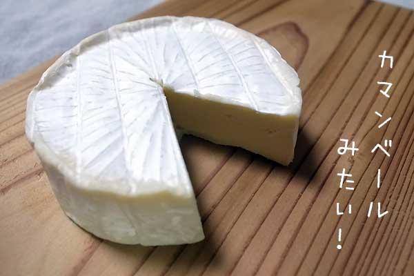 カマンベールチーズにそっくりなブリーチーズ
