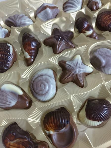 業務スーパーで購入したチョコレートシーシェル