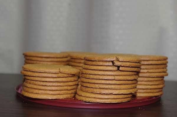 缶から出した業務スーパーのジンジャークッキー