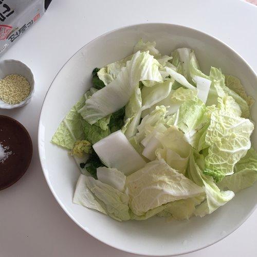 ボウルに入ったザク切りの白菜